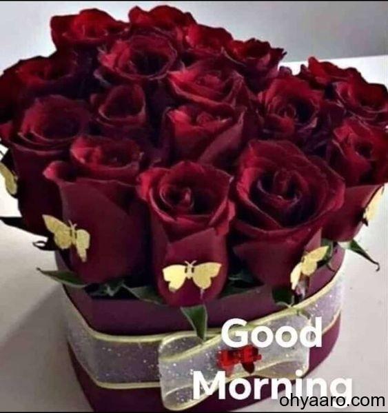 Good Morning Flower Pics - Flowers Healthy