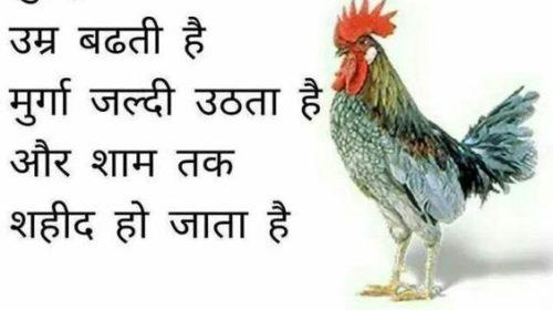 Latest Hindi Jokes Images For WhatsApp