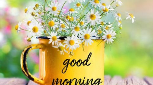 Good Morning Image For WhatsApp Status