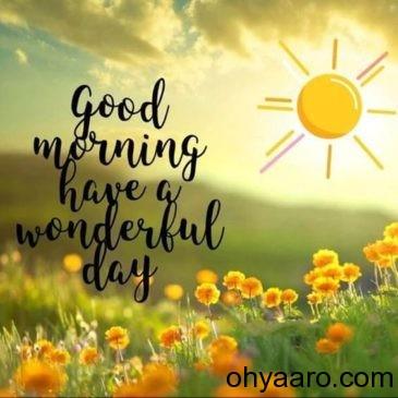 Good Morning HD Wallpaper