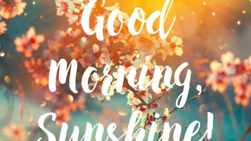 Good Morning HD Wallpaper – Good Morning Wishes