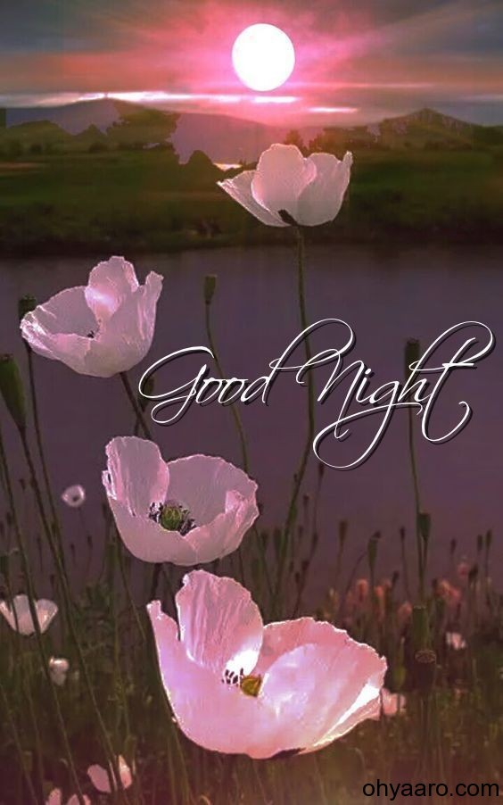 good night image with flowers