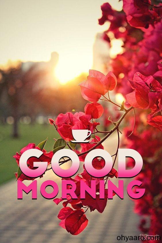 amazing good morning images