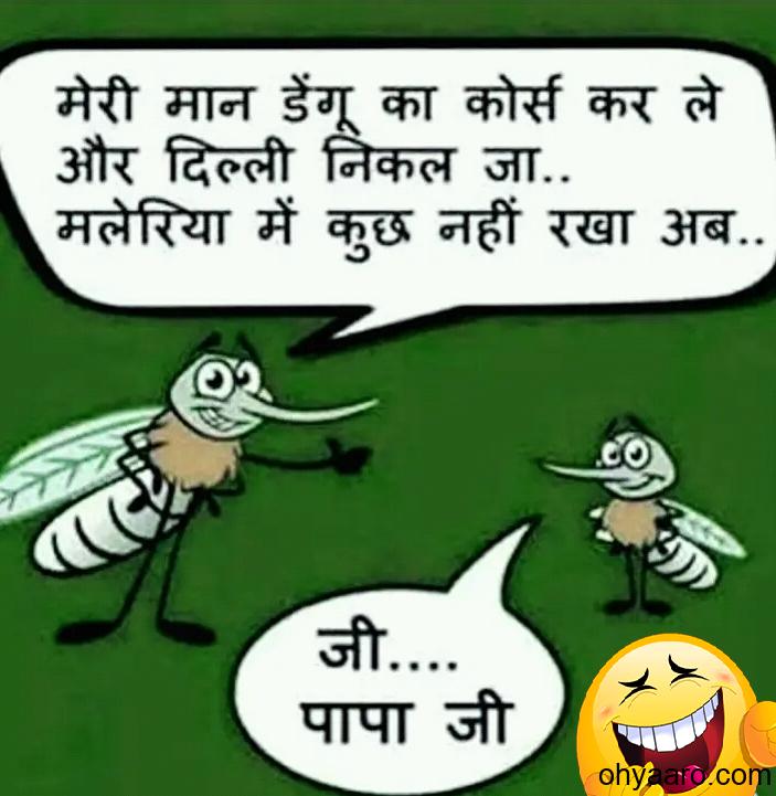 funny mosquito jokes