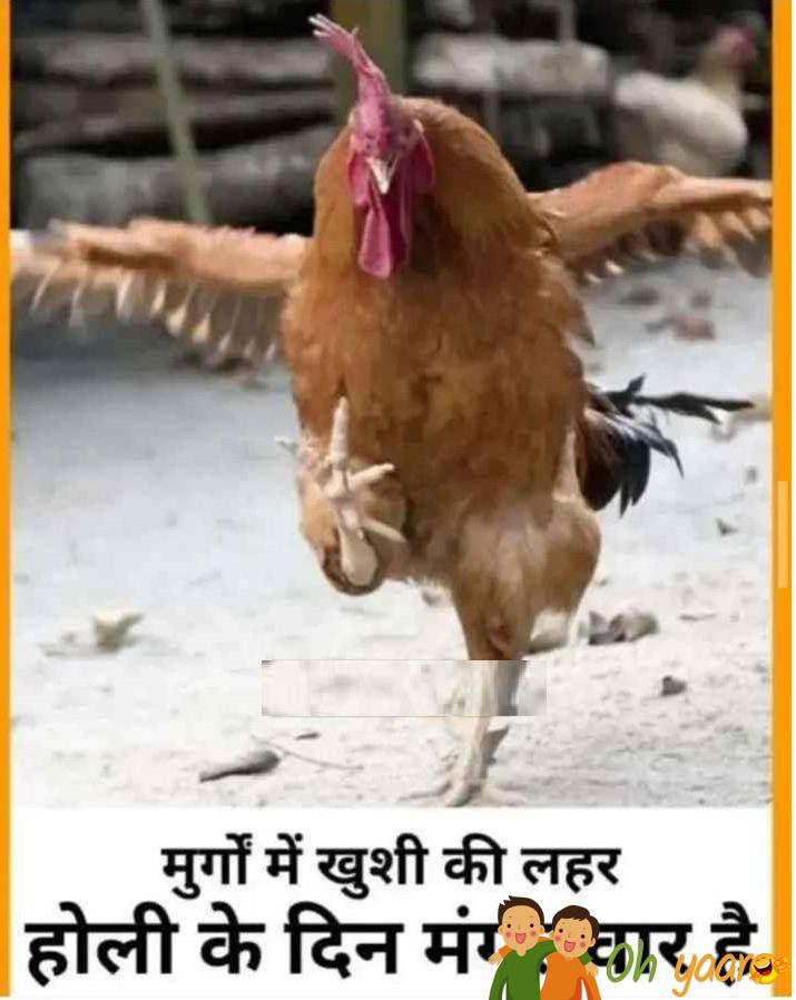 Happy Holi joke