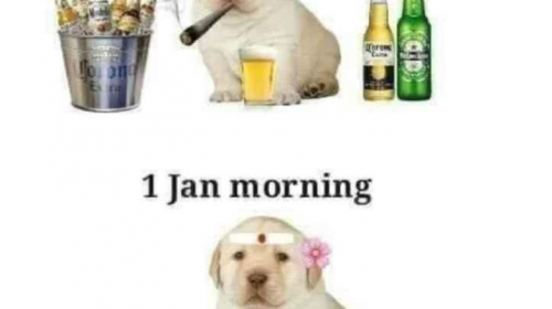 Happy New Year Funny Picture