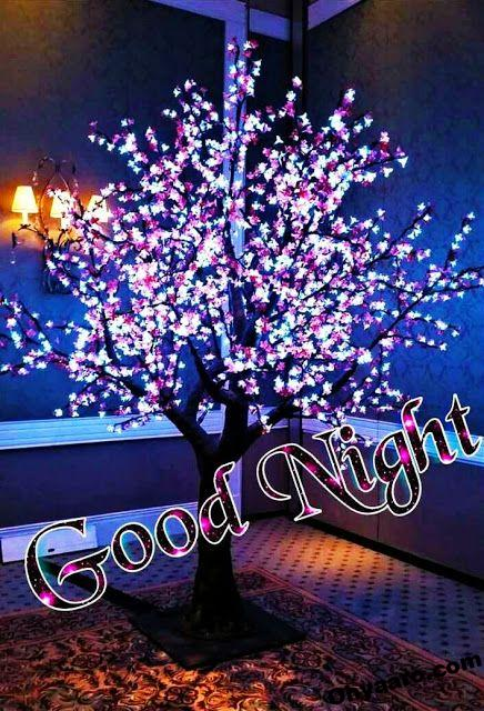 Good Night For Friends For Whatsaap