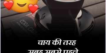 Chai Lover Hindi Quotes