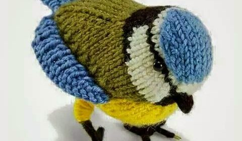 Winter Funny Images