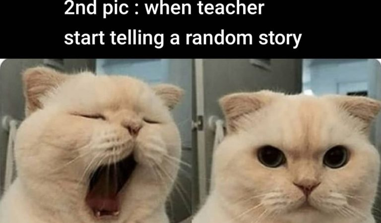 Online Class Funny Memes For Facebook
