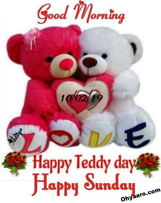 Whatsapp Teddy Day Images
