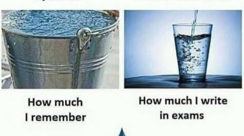 Exam Jokes Pictures