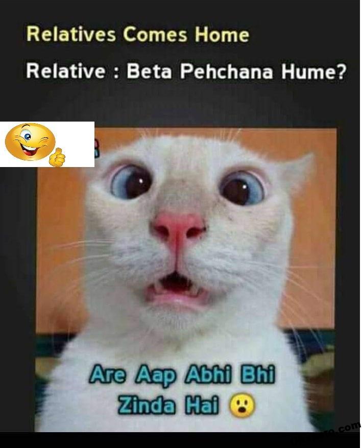 Memes For Relatives