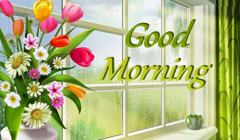 Download Good Morning Wallpaper for WhatsApp