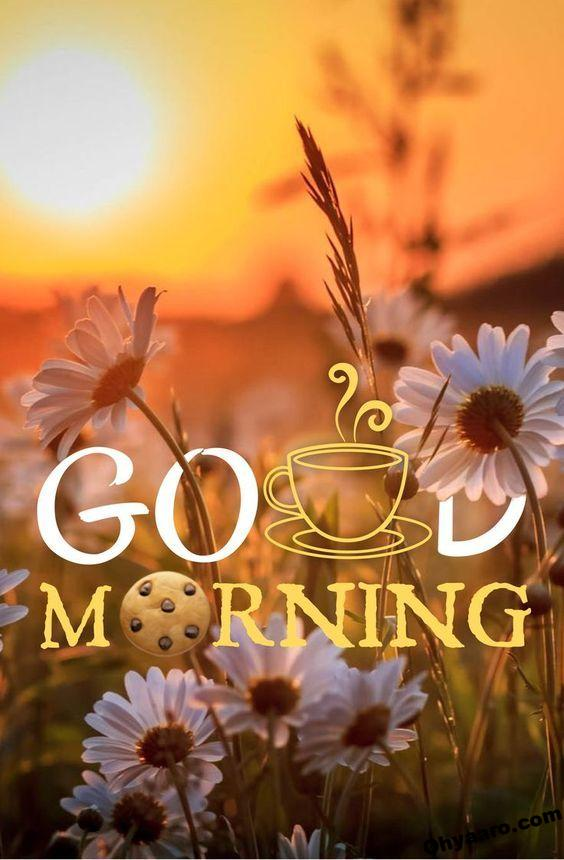 Good Morning Wishes -