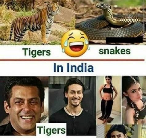 Download Funny Bollywood Jokes Images