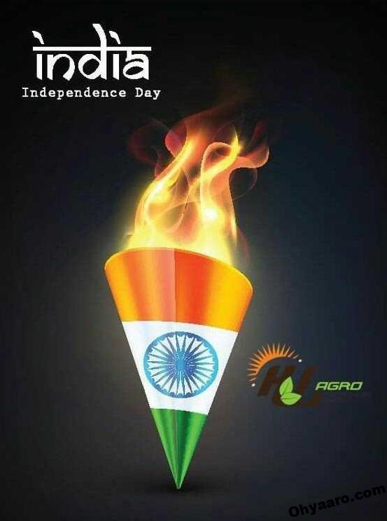 Happy Independence Day Wishe Wallpaper