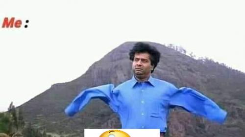 funny raksha bandhan memes